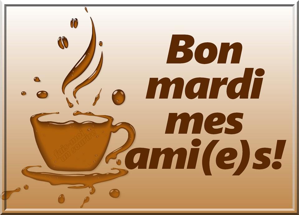 Bon mardi mes ami(e)s!