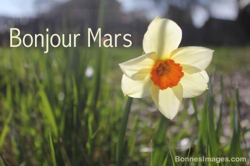 Bonjour Mars