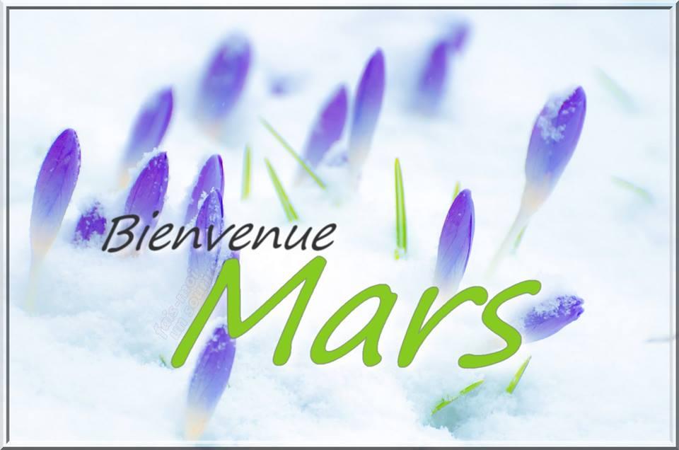 Bienvenue Mars