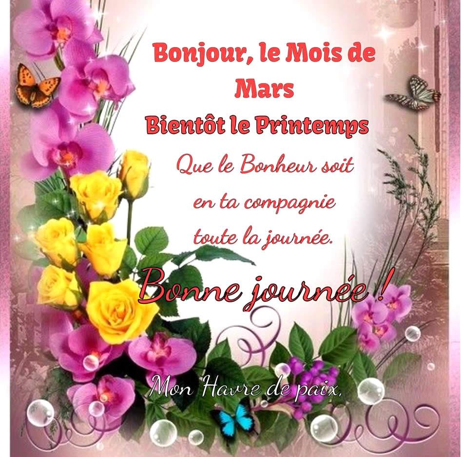 Bonjour, le Mois de Mars Bientôt le Printemps Que le Bonheur soit en ta compagnie toute la journée. Bonne journée !
