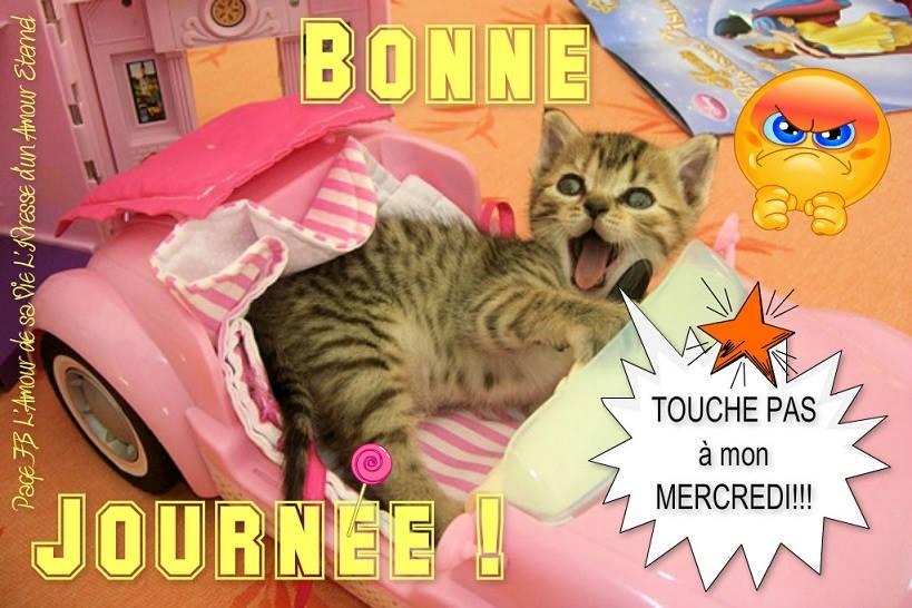 Bonne Journée ! Touche pas à mon mercredi !!!