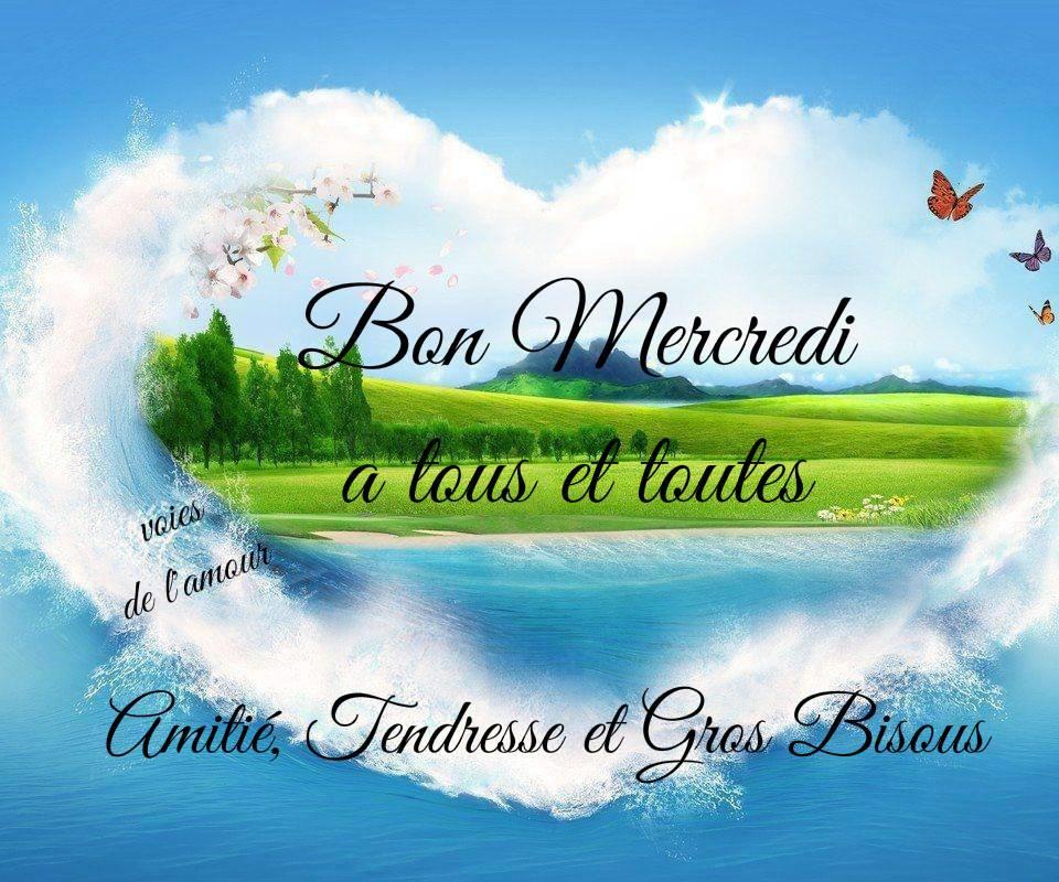 Bonjour ~ Bonsoir - Page 42 Mercredi_065