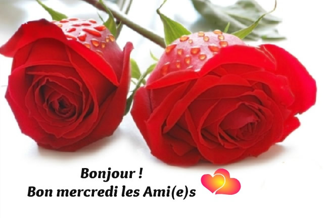 Bonjour ! Bon mercredi les Ami(e)s