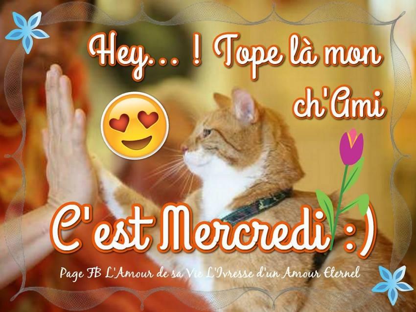 Hey... ! Tope là mon ch'ami. C'est Mercredi :)