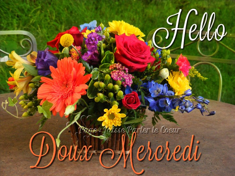 Hello, Doux Mercredi