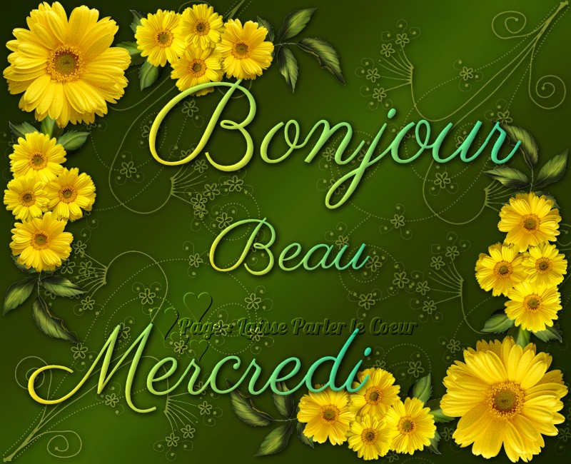 Bonjour, Beau Mercredi