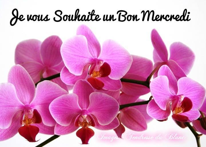 Je vous souhaite un Bon Mercredi