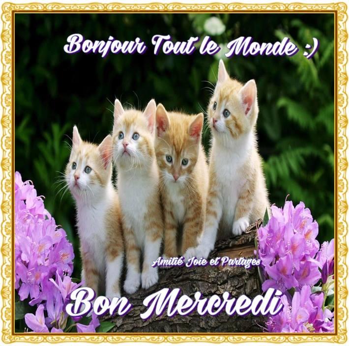Bonjour tout le monde :) Bon Mercredi