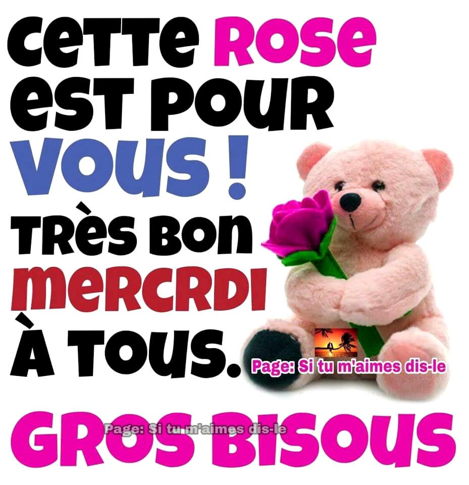 Cette rose est pour vous ! Très bon...
