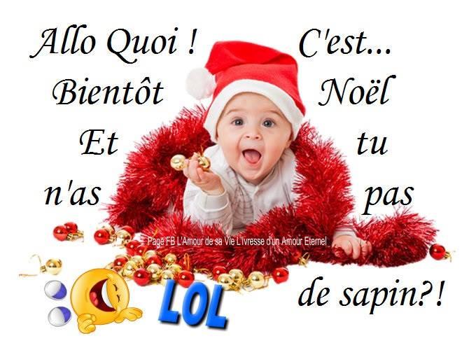 Allô quoi ! C'est bientôt Noël et tu n'as pas de sapin?!