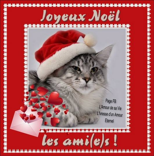 Joyeux Noël les ami(e)s !