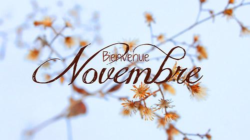 Novembre image 6