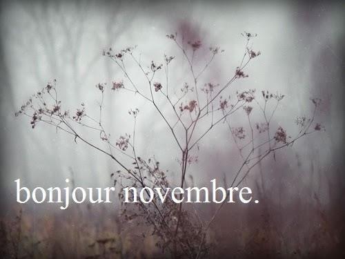 bonjour novembre