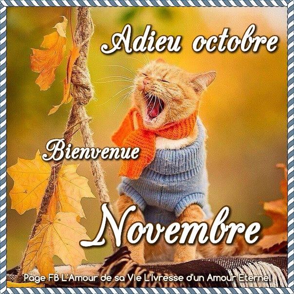 Adieu Octobre, Bienvenue Novembre