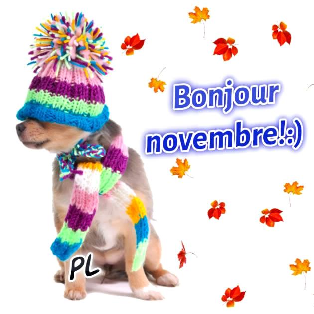 Bonjour Novembre!
