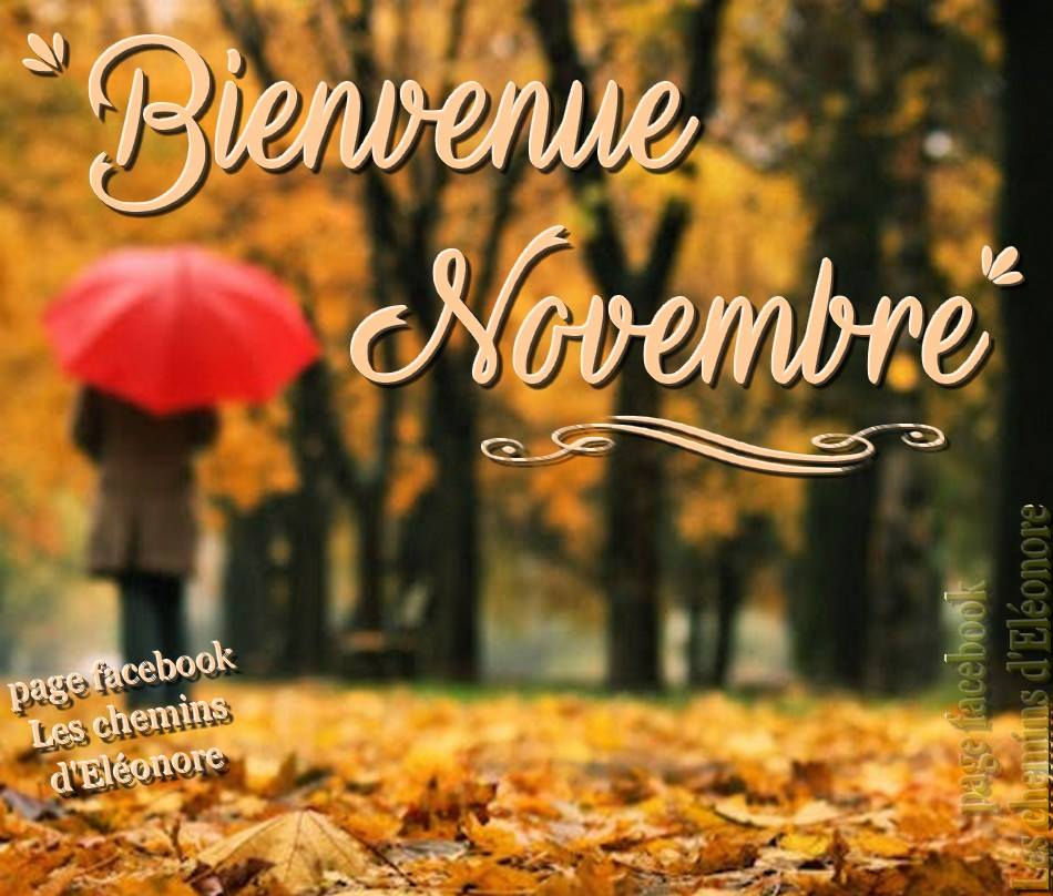 Bienvenue Novembre