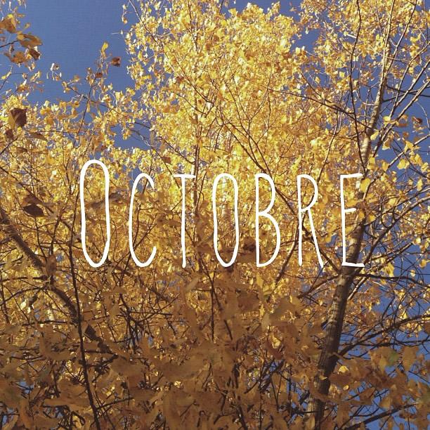 Octobre image #3766