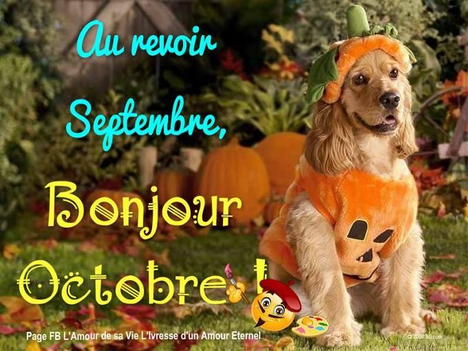Au revoir Septembre, Bonjour Octobre!