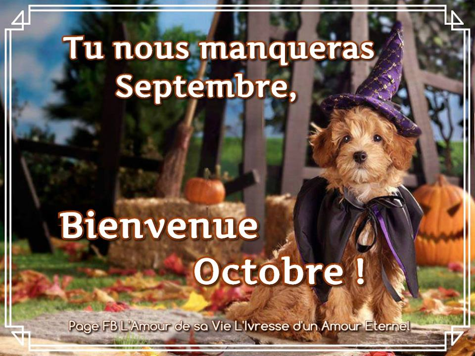 Tu nous manqueras Septembre, Bienvenue Octobre !