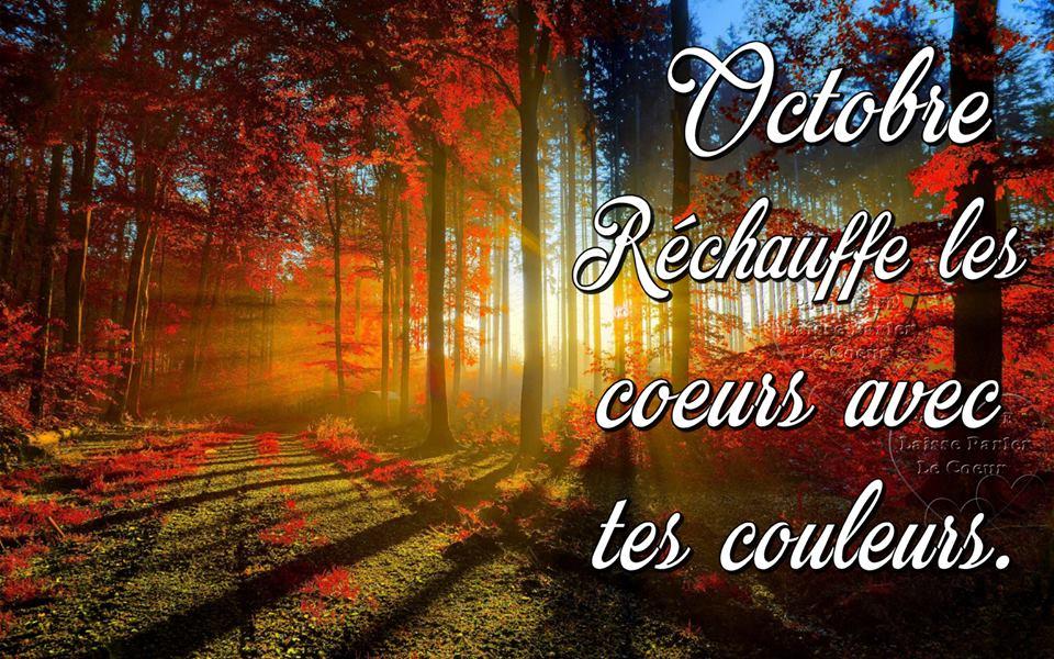 Octobre... Réchauffe les cœurs avec tes couleurs