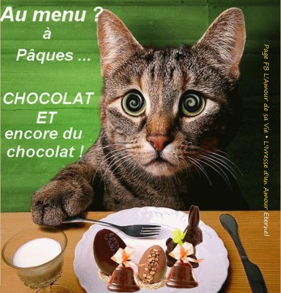 Au menu à Pâques? ... Chocolat et encore du chocolat!