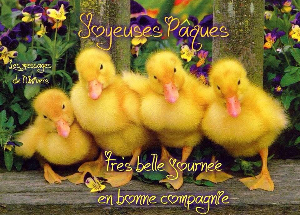 Joyeuses Pâques. Très belle journée en bonne compagnie