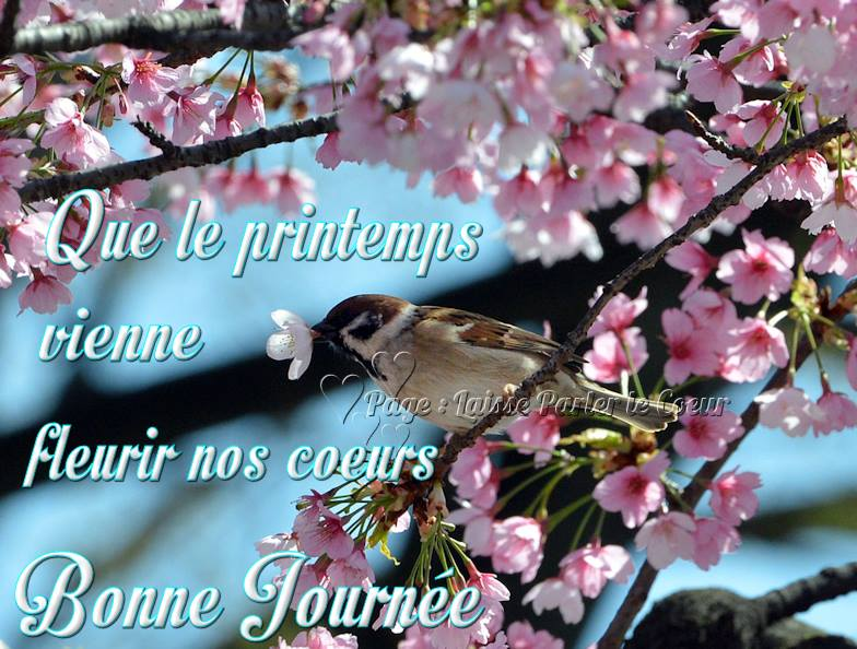 ᐅ 33 Printemps images, photos et illustrations pour facebook ...