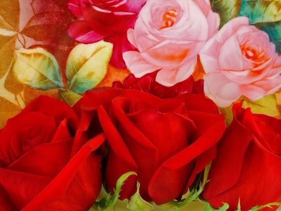 Roses rouges et roses