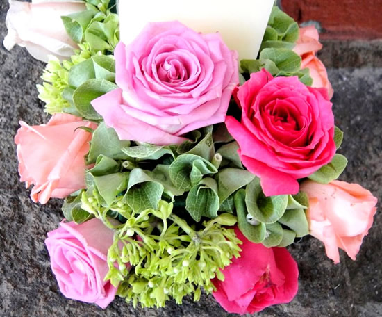 Roses image 4