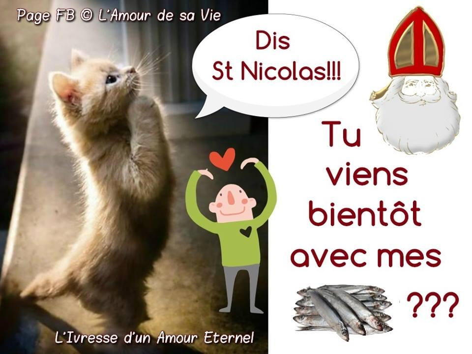 Dis St Nicolas!!! Tu viens bientôt avec...