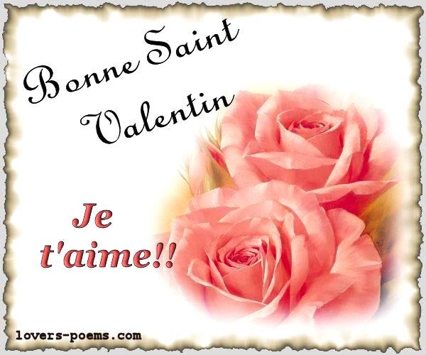 Bonne Saint Valentin! Je t'aime!