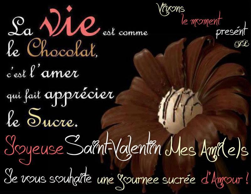 Joyeuse Saint-Valentin mes ami(e)s. Je...