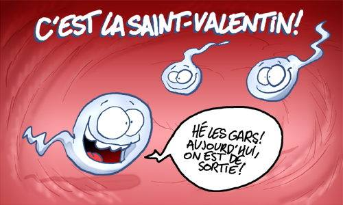 image drole saint valentin