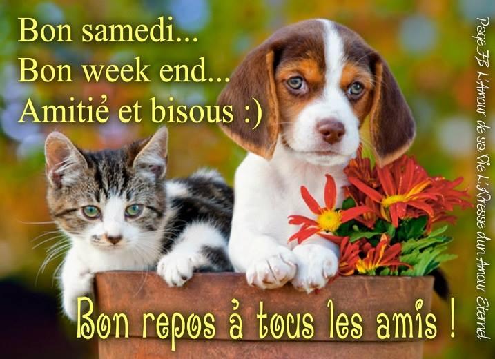 Bon samedi... Bon week end... Amitié et bisous :)