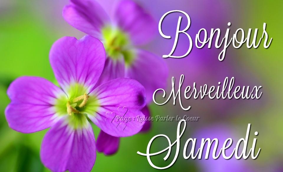 Bonjour, Merveilleux Samedi