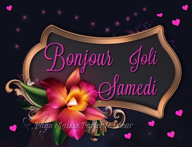 bonjour mes membres - Page 4 Samedi_062