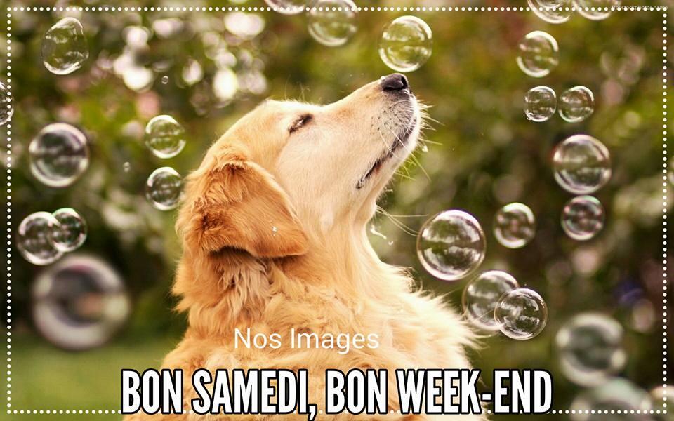 Bon Samedi, Bon Week End
