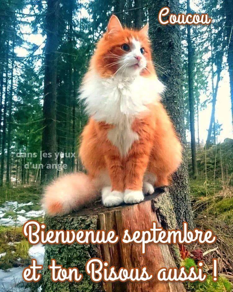 Bienvenue septembre et ton Bisous aussi...
