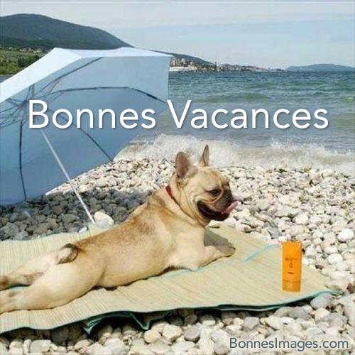 image rigolote vacances