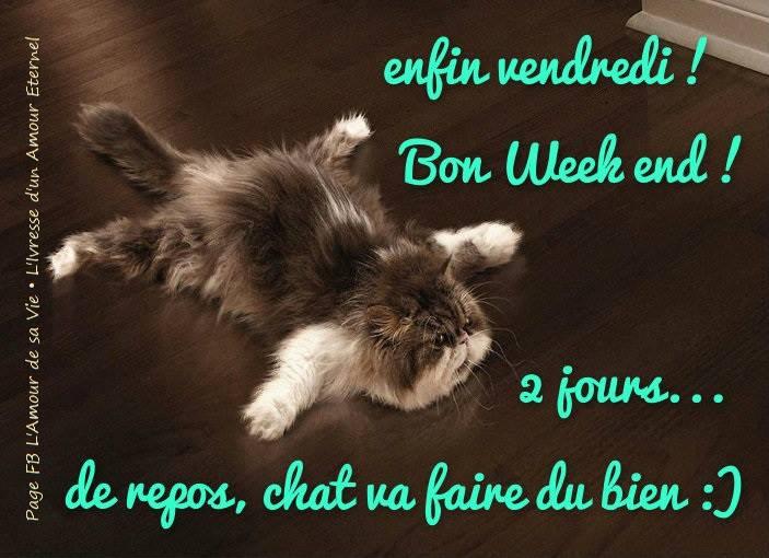 Enfin vendredi! Bon week end! 2 jours de repos, chat va faire du bien <img src=