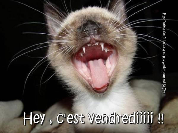 Hey, c'est vendrediiiii !!