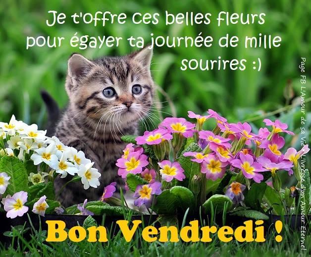 Je t'offre ces belles fleurs pour egayer ta journee de mille sourires :) Bon Vendredi!