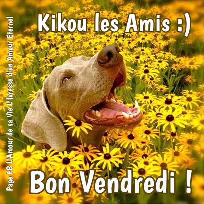 Kikou les Amis :) Bon Vendredi !