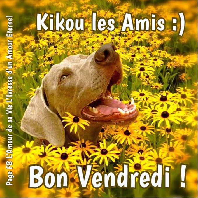 Les Amis Cafe Menu