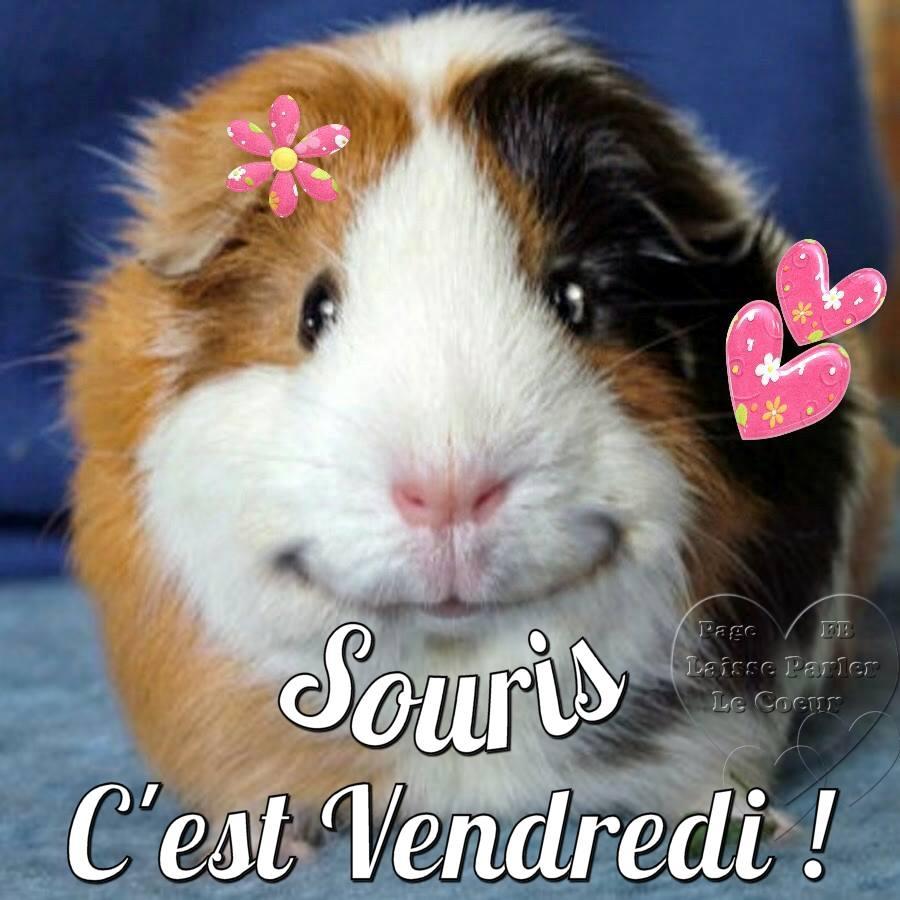 Souris, C'est Vendredi !