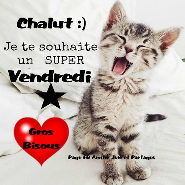 Chalut :) Je te souhaite un super Vendredi